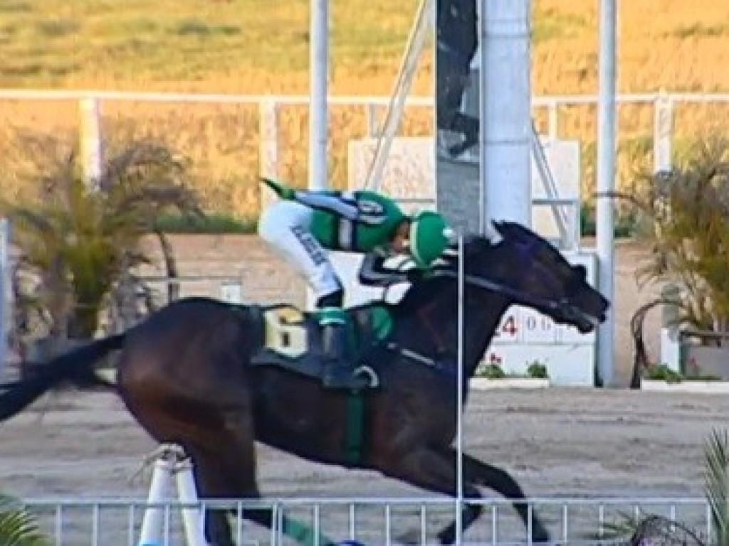 Grand Amiga desbanca os machos no Derby Paranaense