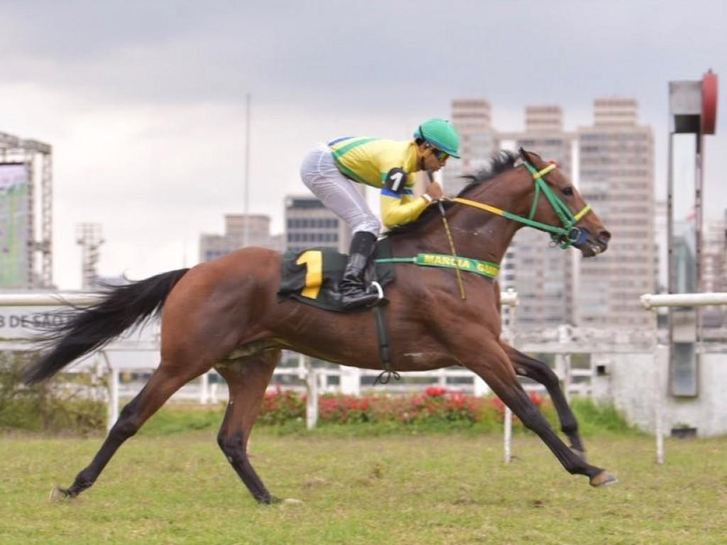 Ouro da Serra confirma favoritismo em listed