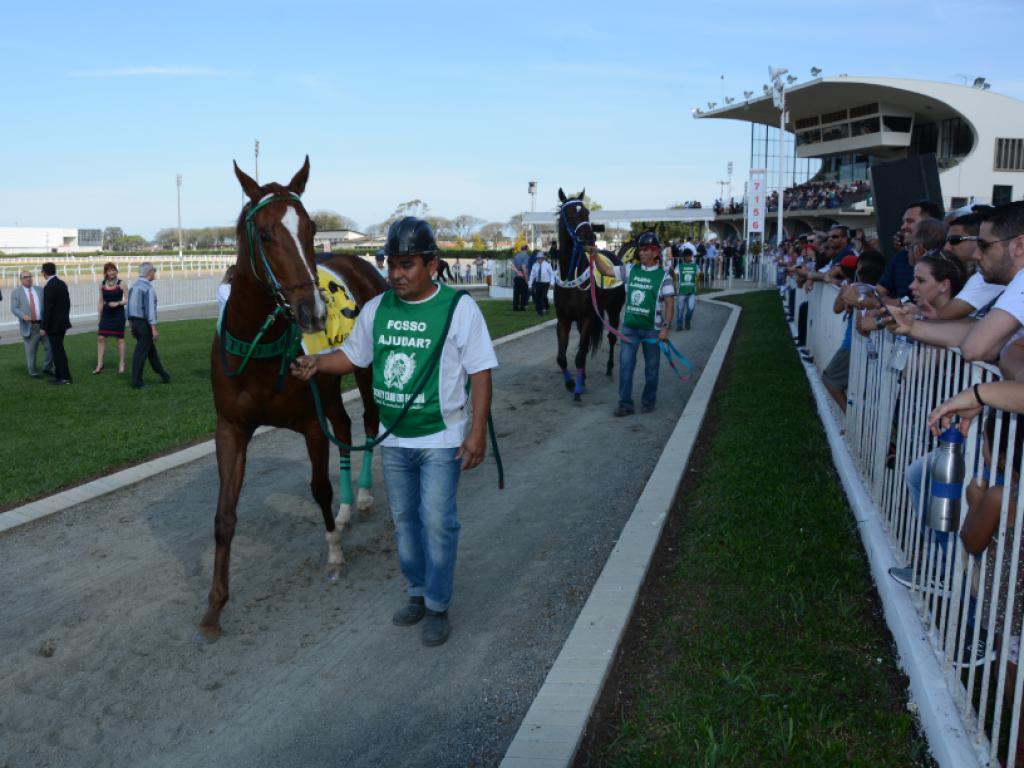 Pegasus Brasil: corredores serão apresentados ao público nesta quarta-feira