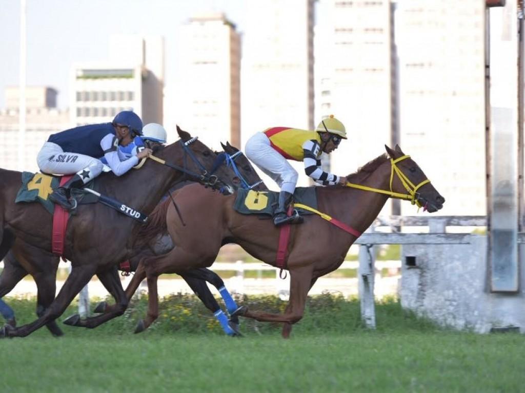 Em grande fase, La Dorothea alcança a quarta vitória consecutiva