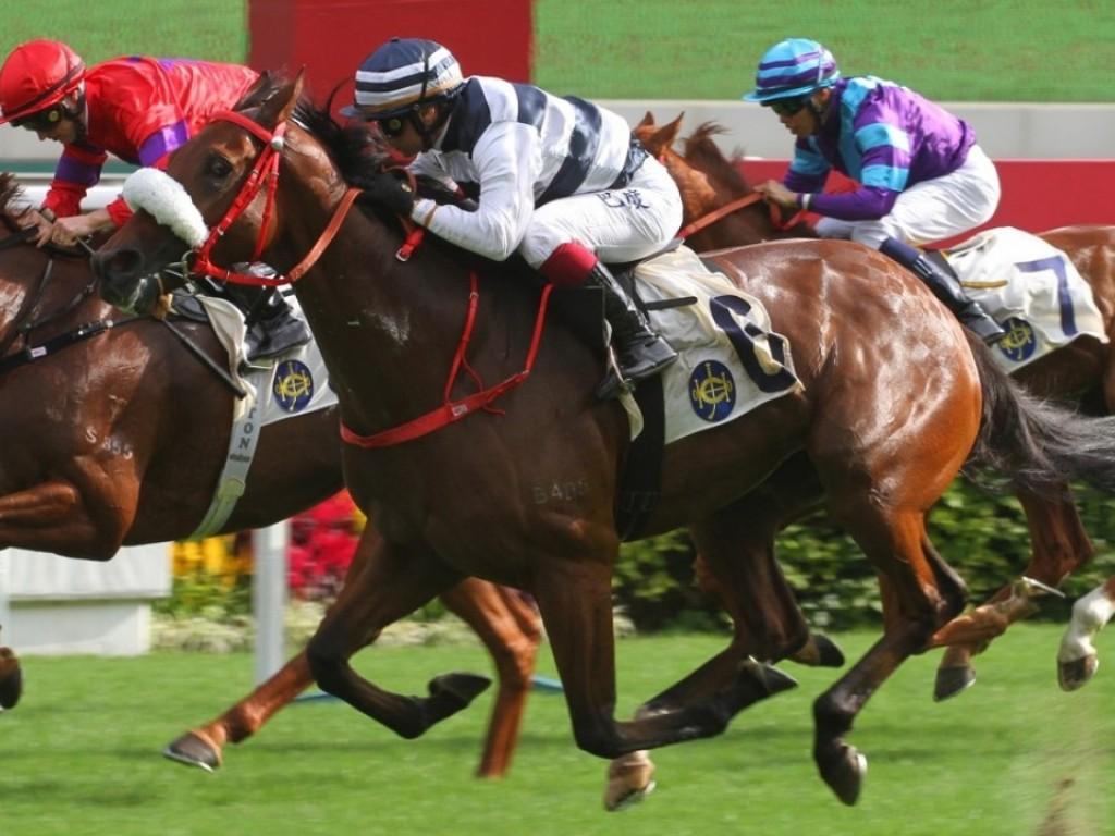 Sha Tin: Cash do Jaguarete encara o Hong Kong Derby