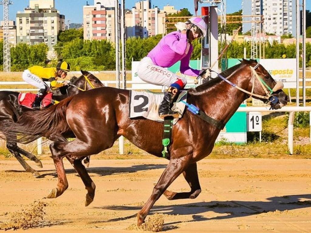 Derby Riograndense é de Emix Wild