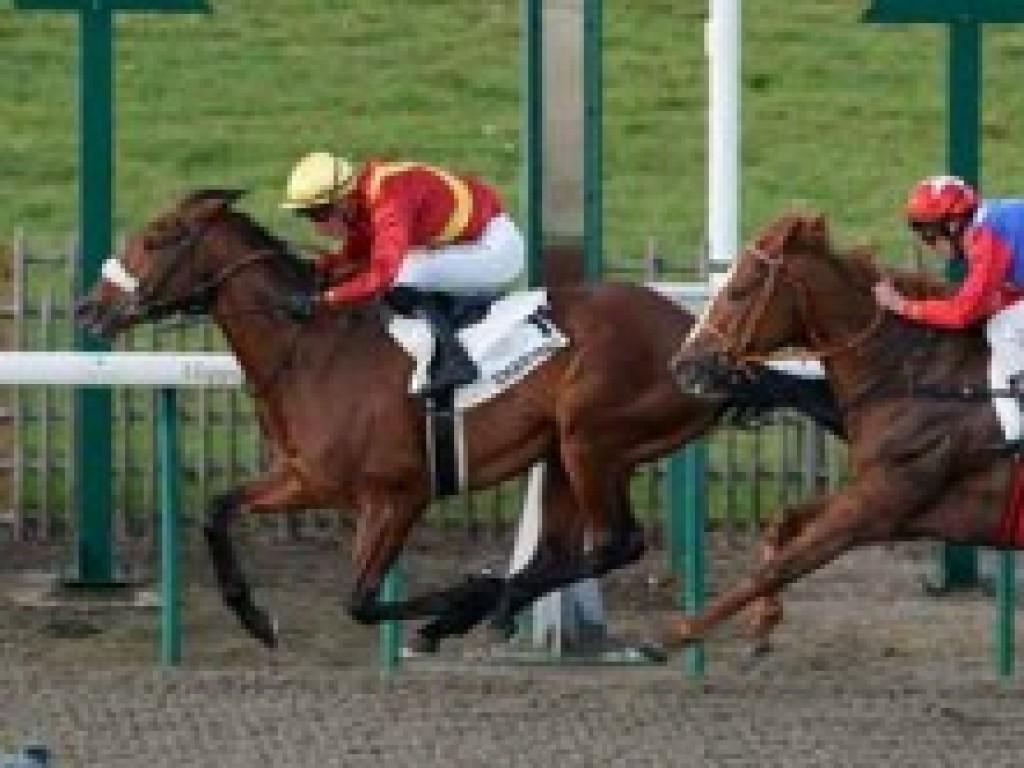França: Truco, filho de Tropa de Elite, vence a primeira em Chantilly
