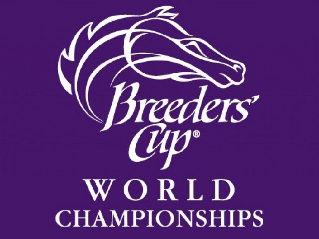 Breeders' Cup: criadores brasileiros terão até 28/2 para nominar garanhões