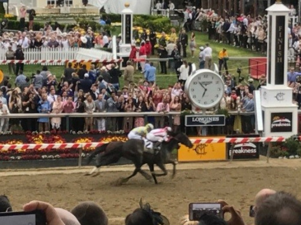 "Cloud Computing bate Classic Empire no ""Preakness""; Always Dreaming falha"