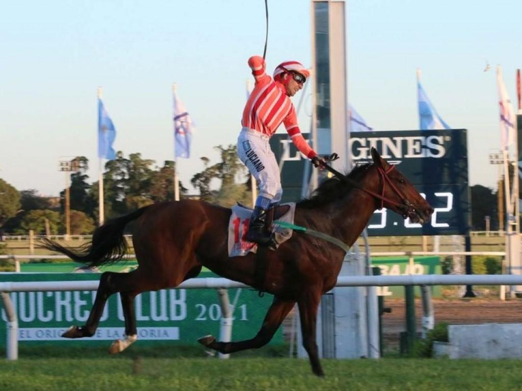 Foto: Filho da brasileira Etoile Blanc, Zodiacal vence o GP Jockey Club (G1), na Argentina