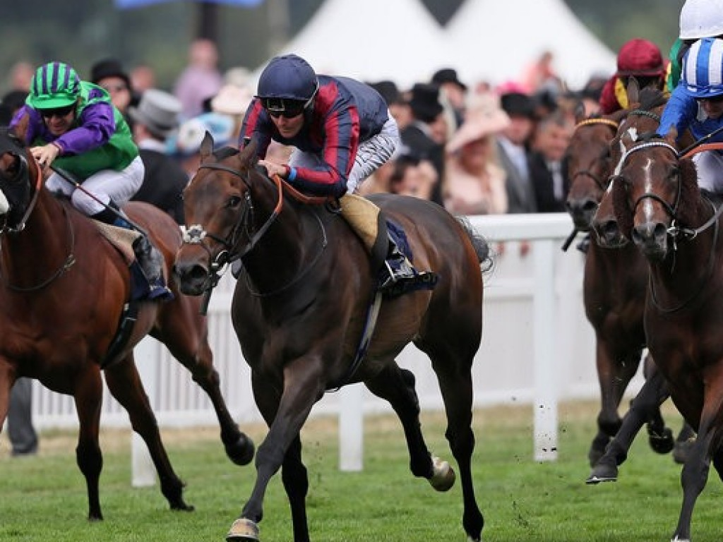 Royal Ascot: no fechar das cortinas, The Tin Man venceu o Diamond Jubilee Stakes (gr.I)