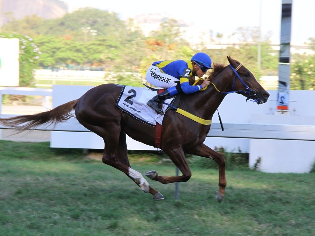 Kingvic e Guanabara dominaram a Copa Leilões Jockey Club Brasileiro