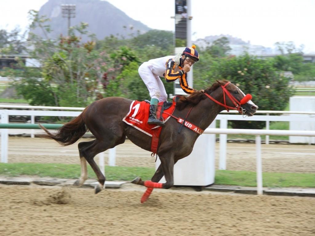 Special Envoy supera Last Hope no GP Salgado Filho (gr.III)