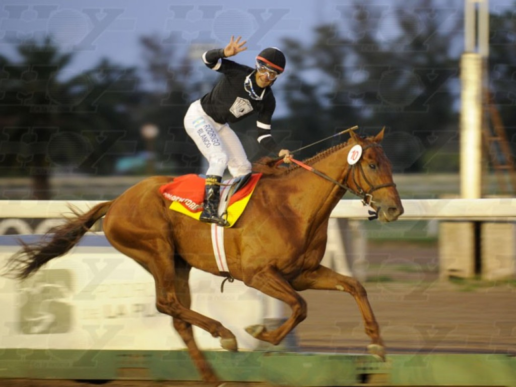 Argentina: crioulo do Araras, Calcolatore venceu o Gran Premio Dardo Rocha (gr.I)